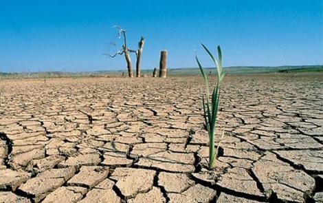 Los problemas del agua en Sonora - Vía Orgánica