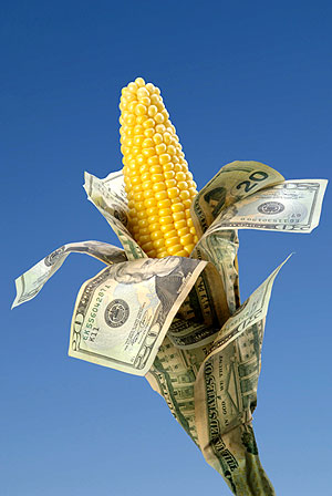 corn money