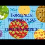 Fundamental mantener la suspensión y entrar al fondo de los argumentos en la Demanda Colectiva contra la siembra de maíz transgénico