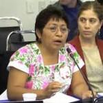Conformación de la Misión de Observación de la Consulta al pueblo Maya  sobre la siembra de soya genéticamente modificada de la empresa Monsanto