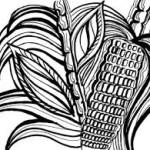 Itacate. Agrotóxicos y cáncer