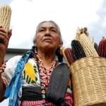 Posicionamiento en el marco del día nacional del maíz