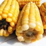 México, capaz de enfrentar problemas de producción sin el maíz transgénico