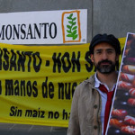 Otorgan tres permisos a Monsanto para siembra de transgénicos en Tamaulipas