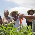 Campesinas ambientalistas de Petatlán, Guerrero