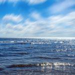 Enfrentan los océanos momento crítico