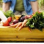 Lo que no sabías de los alimentos orgánicos
