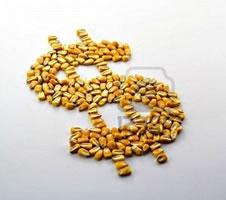 peso maiz de grano, corn