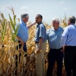 Por la sequía, compra Obama hasta 170 mdd en alimentos