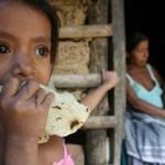 FAO: padecen hambre 34.3 millones de personas en América Latina y el Caribe