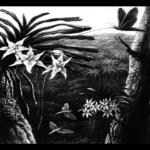 Insectos, Plantas y Transgénicos
