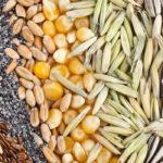 Buenas semillas