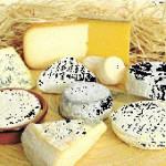 Buscan apoyo para el queso artesanal