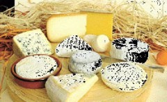 queso artesanal, artisan cheese