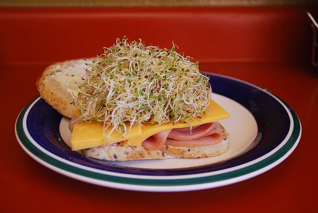 Sandwich con germinados