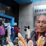 Protesta pacífica contra la SEMARNAT en el Día Mundial del Medio Ambiente