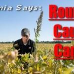 Monsanto demandó al Estado de California por reclasificar de cancerígeno al Glifosato